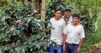 Fertig ! - Hinweistafel auf das Projekt Cero Deforestacion und dessen Agroforstsystem mit Kaffee